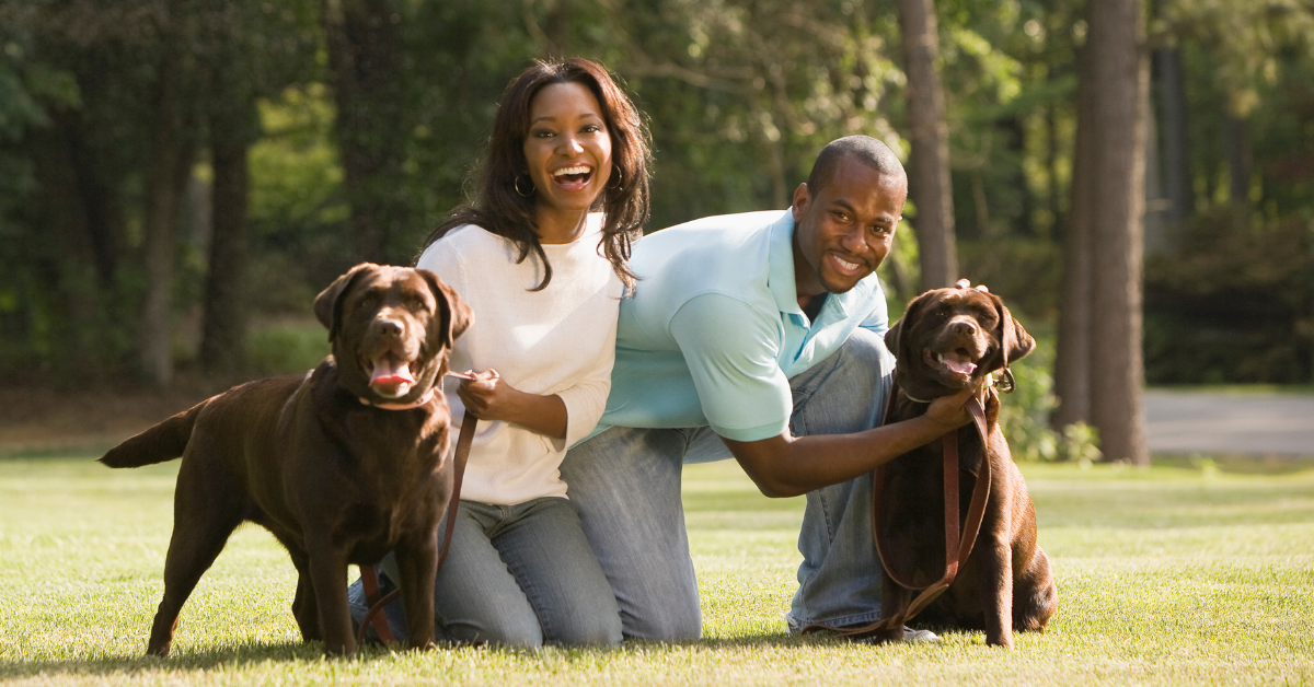 Couple in grassy park kneeling with their two brown dogs